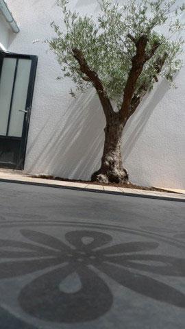 Vue sur le patio, depuis la chambre alcôve